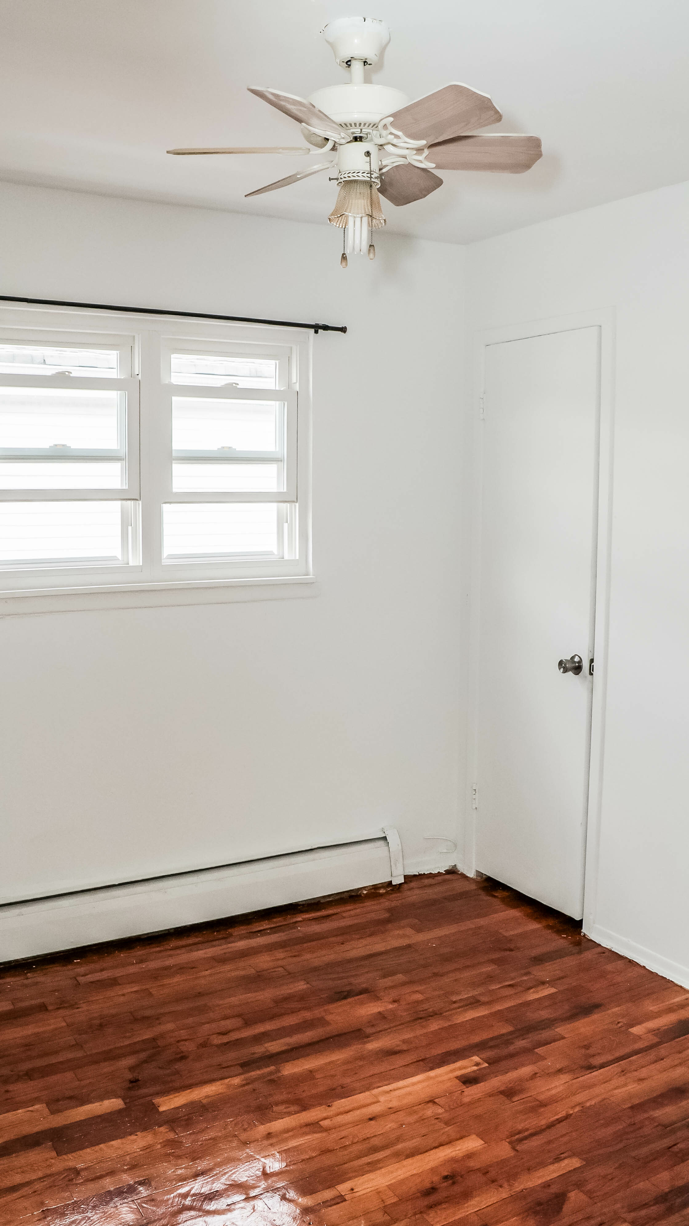 773 Pine Street New Lots Brooklyn NY 11208